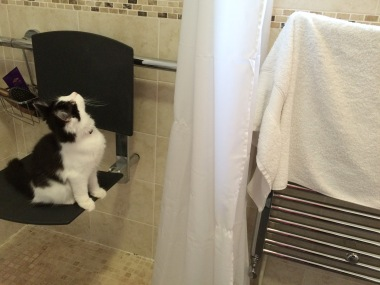 Testing the shower seat